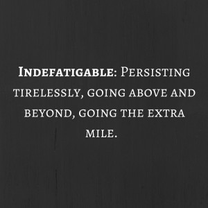 Indefatigable-Persisting-tirelessly-going-600x600